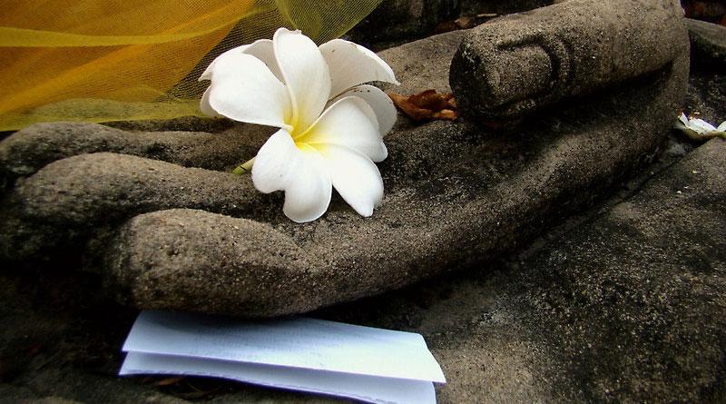 Bài 18 – Phật dạy : Vượt thoát đau khổ để sống an lạc 3