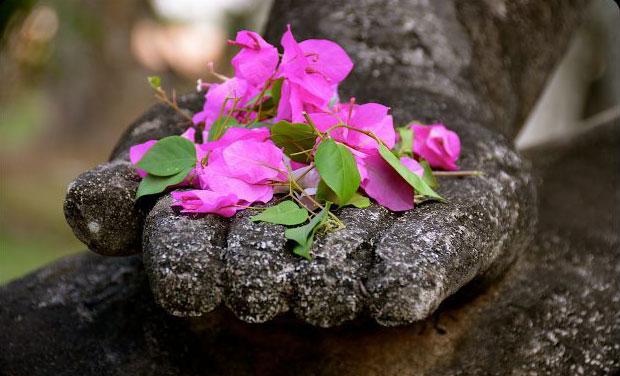 Đạo nghĩa vợ chồng theo quan điểm Phật Giáo