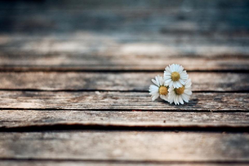 Tình yêu, phải chăng là luôn sợ hãi, luôn bất an?