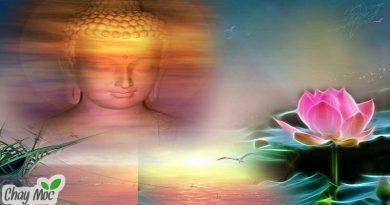 Nhân duyên còn được ở bên nhau thì hãy thực lòng trân quý