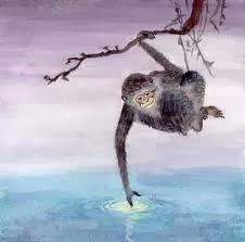 Khỉ vớt trăng