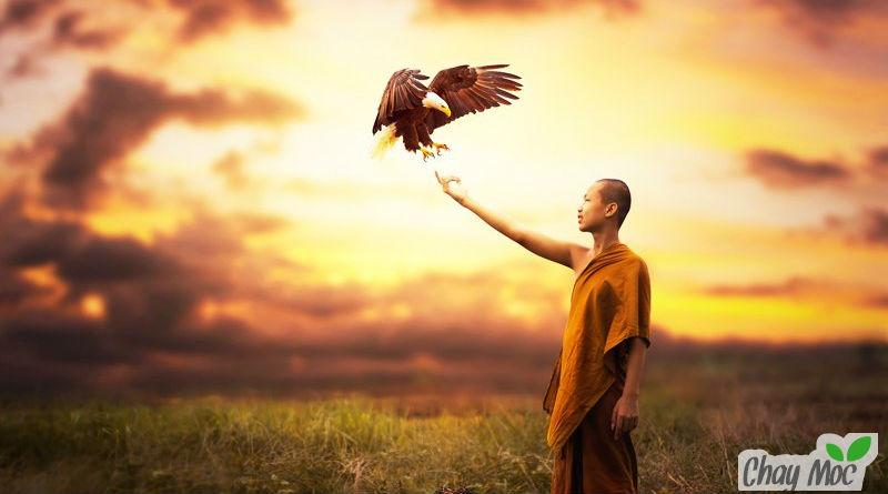 Cảm nhận thế giới về thế giới bên ngoài luôn đến từ trong tâm mỗi người.