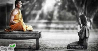 Người phụ nữ bất hạnh đến cầu kiến vị thiền sư về triết lý nhân sinh