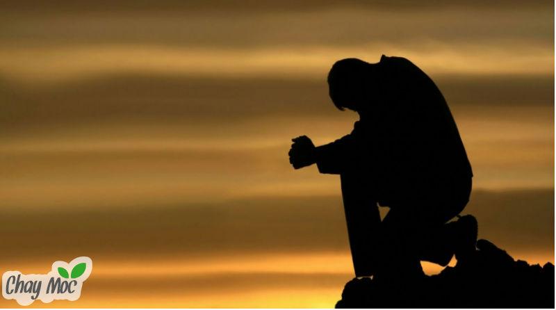 Khổ đau thường là bước đệm để đi đến bến bờ hạnh phúc.
