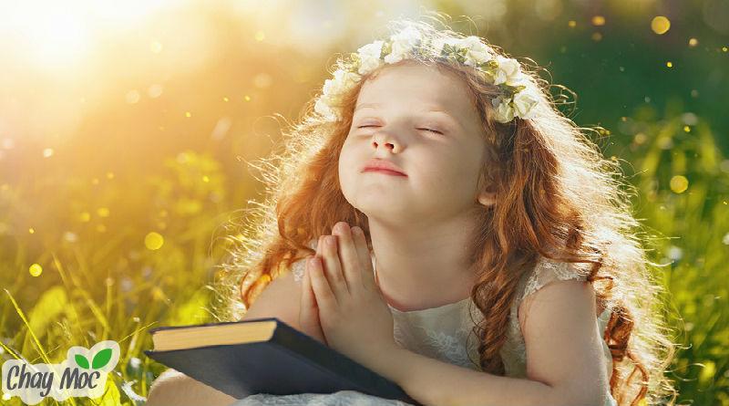 Niềm vui của đời người, đôi khi lại đến từ sự thiện lương