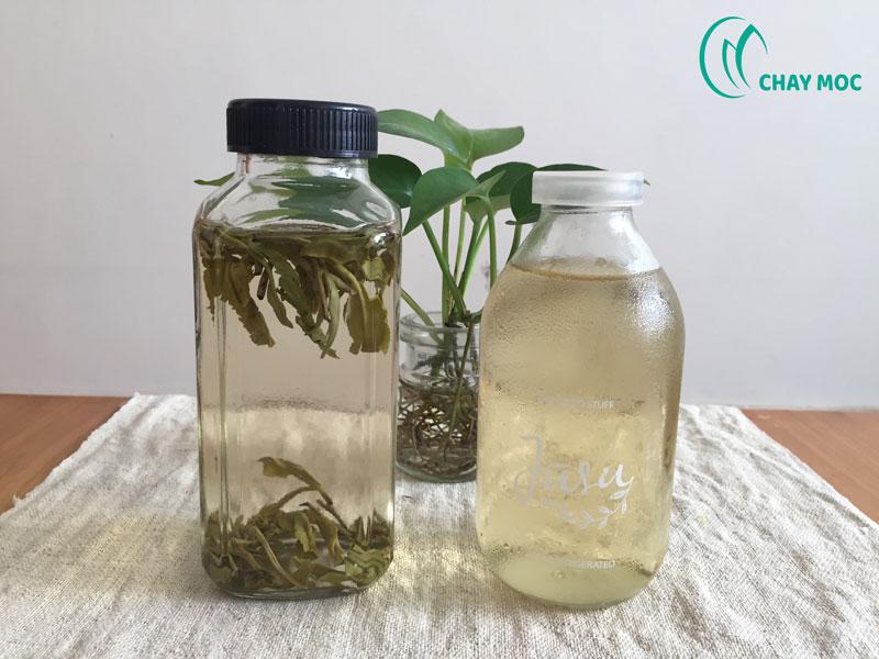 Chay Mộc thường dùng hai bình để pha trà lạnh Một bình để chiết nước uống và một bình ngâm ạ!